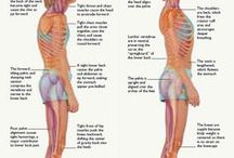 Posture Info and Tips / Good posture has a host of health benefits. Here are some tips on how to improve posture.