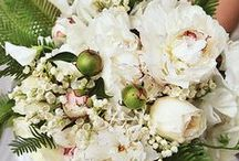 Floral Inspiration: Whites and Creams