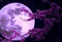 Moonlight / moons
