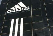 / Adidas /