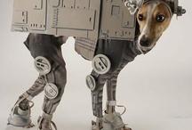 Greyhounds! / by Renea C.