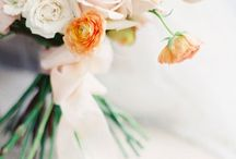 Weddings | Peach Affair / by The Curated Bride