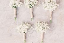 Weddings | Baby's Breath / by The Curated Bride