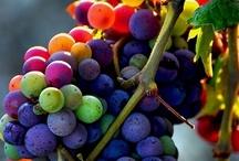Color Inspiration / by Deborah Hendrickson