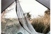 camping / by femke dik