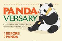 Google Panda / Google panda