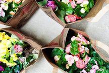 Flowers / by Maya Mahajan