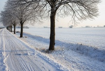 Winter / Winter, Decor, Cleaning, DIY Crafts, Bellabay Realty, Grand Rapids, Michigan, For the Home
