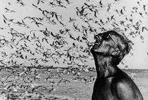 Black & White Photography / Fotografia en blanco y negro / Inspiring images / Imágenes que inspiran / by Antònia Calafat Capó