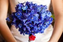 Delphiniums Bridal Bouquet / #delphinium #delphiniumflower #delphiniumbridalbouquet #delphiniumbouquetmariee #delphiniummariee #blueflower #blueweddingflower #bridalbouquet #weddingflowers #weddingbouquet #bridalflower#paris #pariswedding #weddingparis #dlgpariswedding #dlgparis #weddingplannerparis #elopementparis#destinationwedding #destinationweddingparis #mariageaparis #organisatricemariage #agenceorganisationmariageparis #love #france #eventplannerparis #weddingday #theknot #flyawaybride #luxwed #travelabroad