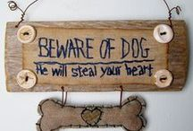 For the Pet Owners