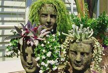 Trädgård och växter