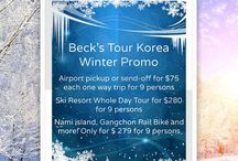 Nami Island / A Private Travel Tour Company ... free wifi on board, no worries, no hurry.