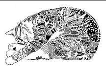 Dier / Animal Zen / by Corrie De Groot