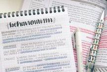 study/plan  
