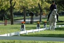 Dressage Arenas & Dressage favorites / Premier Equestrian, the arena company, manufactures horse riding equipment. Dressage arenas, Premier dressage arena, dressage letters, dressage court, dressage products, dressage setup, dressage accessories
