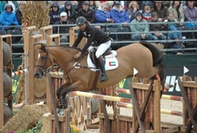 Horse Jumping Photos / We love pictures of horses, especially jumping horses.