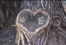 I LOVE HEARTS!!!