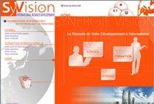Formations interculturelles / SyVision vou forme et vous accompagne dans votre approche des marchés asiatiques