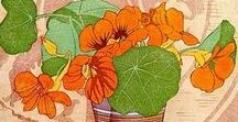 6.1. ART. GRAPHICS. Easel graphics. Botanical.