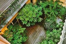 Urban Paysage / Nous sommes deux frères passionnés par l'aménagement des jardins.  Créer et aménager des espaces de vie différents en utilisant les matériaux nobles de la nature est notre vision de vos espaces de vie extérieurs. Nous concevons et réalisons ces créations toujours en fonction de vos besoins et de vos envies…  Contactez-nous… nous mettrons en scène vos jardins pour votre plus grand bonheur.