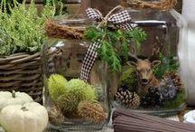 Herbstdeko & DIY's / Schicke Deko und Inspiration für den Herbst - DIY's, Blumen, Dekoration und vieles mehr findet ihr hier!