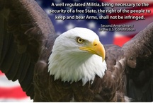 The Second Amendment / A well regulated militia being necessary to the security of a free state, the right of the people to keep and bear arms shall not be infringed.