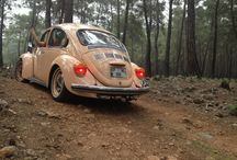 Vosvos / Vw beetle