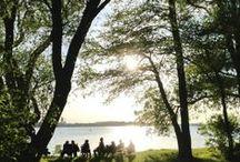Stellplatz-Galerie Naturcamping Zwei Seen am Plauer See / 450 großzügige Wiesen-Stellplätze für Caravans, Wohnmobile und Zelte direkt am drittgrößten mecklenburgischen See: wahlweise entlang des Badeufers, hell & warm auf den Sonnenwiesen oder schattig & ruhig unter hohen Bäumen auf den Waldterrassen mit direktem Blick auf den Plauer See.  http://www.zweiseen.de
