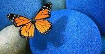 : poetic☚Euro : / Bibbity Bobbity Boos of Everything Orange/Electric Blue Combo.