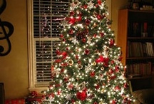 Christmas - holiday season / by Darryn Staveley