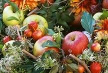 Autumn / Fall - Decor / by Darryn Staveley