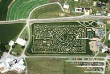 Corn Mazes / Maze designs from all over the world!