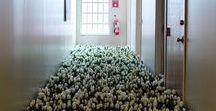 """Bloom, 2003 / """"Bloom"""" was a site-specific project for the Massachusetts Mental Health Center, Boston, MA, in which I used 28,000 flowers in bloom and 5,600 square feet of live sod throughout the historic psychiatric institution to mark the persistent absence of flowers in psychiatric hospital settings. It was open to the public for four days, after which all flowers were donated and delivered to residents in shelters, halfway houses, and psychiatric hospitals. www.anna-haber.com"""