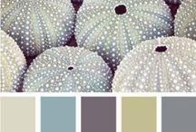 Farben . Wand & Boden & Fassaden