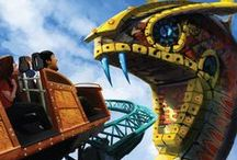 Cobra's Curse - Coming in 2016 / This isn't your ordinary roller coaster. This one-of-a-kind family Spin Coaster takes riders on a whirlwind of family fun and an adventure of exciting explorations. After ascending on a vertical lift, just like an elevator, riders will come face-to-face with an 80-foot snake icon and trek over the park's Serengeti Plain. / by Busch Gardens Tampa