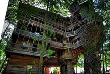 Treehouses / An Ewok's abode.