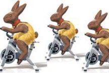 Veselé Velikonoce / Všem našim přátelům, fanouškům, kamarádům, sportovcům a zákazníkům přejeme šťastné Velikonoce 2015.