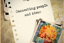 Tagetia Network / Tagetia is YOUR Network - If you like to pin on this board, please get in touch, and we will add you.