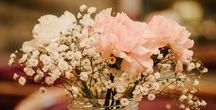 About Your Wedding / About your wedding: decor, colors, themes, favors, and tips for the beautiful, elegant, and fun wedding of your dreams.