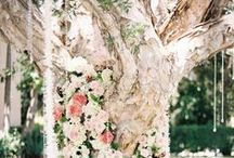 Peach Beige Wedding