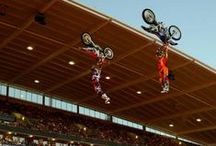 FMX / Freestyle Motocross and Nitro Circus / by roadriderjp
