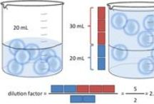 Serial dilutions