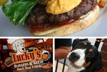 Dog Friendly Dining on the Highway / Dog friendly restaurants