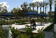 Campus Life / by CSUF, Irvine Campus