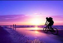 Biking Tips & Fun Facts