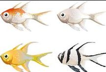 Clipart fish and sea