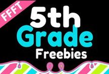 FFFT 5th Grade / FREE products for teachers and homeschooling parents of 5th grade children.