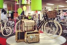Van Vliet Tweewielers de winkel