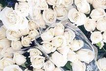 F L O R A L / Floral Inspiration
